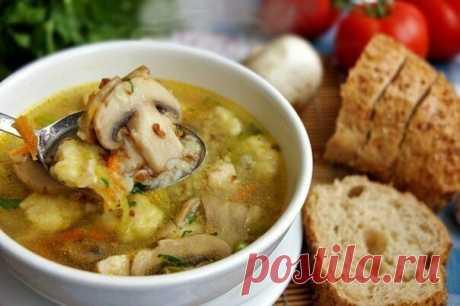 Гречневый суп с грибами и картофельными клёцками Гречневый суп с грибами и картофельными клёцками  Еще один вкусный супчик с грибами, а клецки получились очень нежными... и все вместе просто супер!  Ингредиенты:  • куриная грудка • 2,5-3 литра воды • 250 гр. шампиньонов • 12 стакана гречки 1 луковица • 1 небольшая морковь • лук порей •