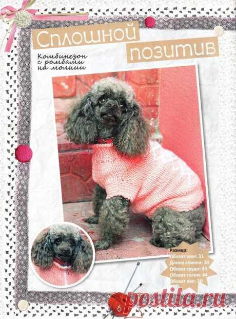 осень 2012 № 3.Журнал вязания для животных.