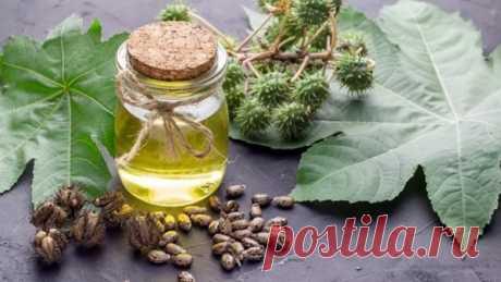 Касторовое масло для волос: применение и способы использования