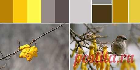 Серый и желтый в интерьере: сочетание, создающее стильное и оригинальное пространство