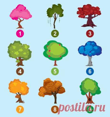Тест. Выберите дерево, имырасскажем осамых ярких чертах вашей личности