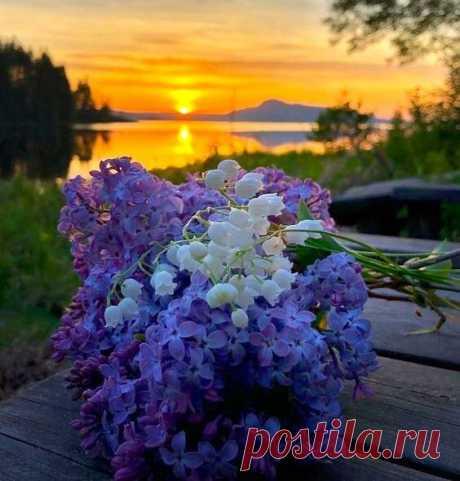 ༺🌸༻Я дарю тебе эту весну, Выйди на улицу и бери ее всю...