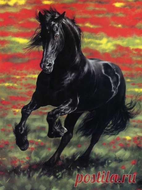 Американская художница Лесли Харрисон рисует животных. Ее работы на первый взгляд могут показаться фотографиями. Но это рисунки, выполненные в стиле реализма пастельными красками. Животные на них настолько живые...