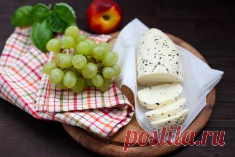 Сыр «Халуми» своими руками. Просто и вкусно//ОПТИМИСТ