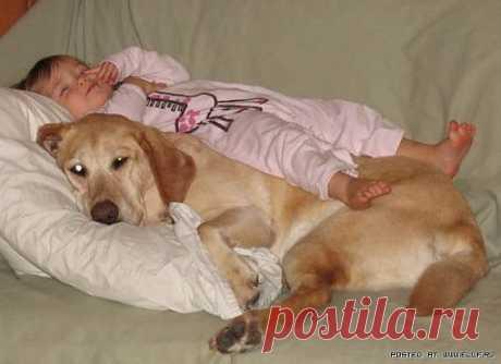 Ну,вот усыпил,можно и самому вздремнуть подумал я,хорошо лежим брат мой младший..)