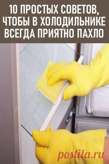 10 советов чтобы в холодильнике всегда приятно пахло