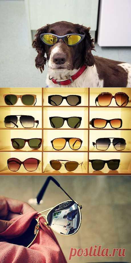 Нужно ли носить тёмные очки и чем отличаются обычные линзы от поляризационных и фотохромных? | Лайфхакер