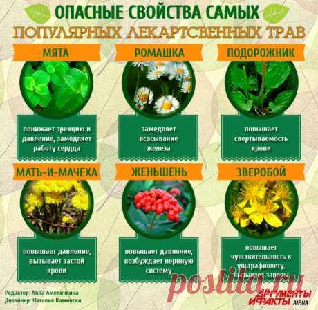 Опасные свойства самых популярных лекарственных трав
