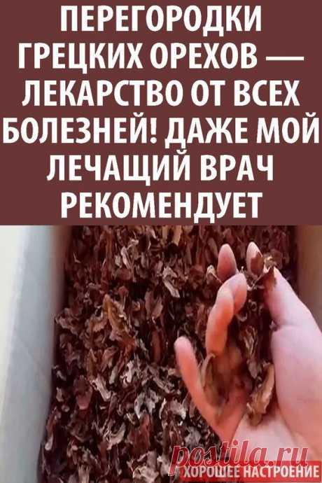 Перегородки грецких орехов — лекарство от всех болезней! Даже мой лечащий врач рекомендует - Упражнения и похудение