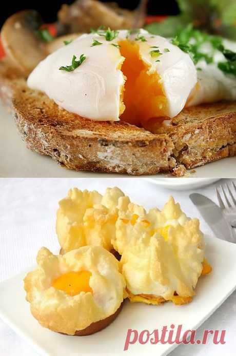 Пашот, орсини и другие необычные способы приготовления яиц | ДОСТОЙНАЯ ЖИЗНЬ НА ПЕНСИИ