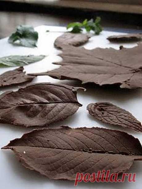 Шоколадные листочки. Шоколадные конфеты. Все своими руками | Сами с усами