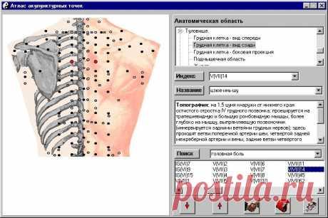 акупунктурные точки на теле человека: 20 тыс изображений найдено в Яндекс.Картинках