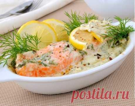 Красная рыба в сливочном соусе  Ингредиенты:  Красная рыба — 800 г Сливки — 300 г Соль — по вкусу Перец — по вкусу Специи — по вкусу Зелень — по вкусу Горчица — по вкусу Масло растительное — 3 ст. л.  Приготовление:  1. Подготавливаем рыбу. Промываем филе и разрезаем на кусочки так, чтобы удобно было класть на противень. 2. Готовим сливочный соус. Для этого выливаем сливки в миску. Насыпаем соль, красный и черный перец, а также сушеную либо нарубленную свежую зелень. По же...