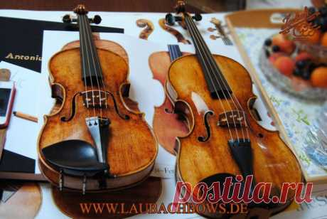 About Laubach - fine violin, viola, cello, bows and gold rosin - Laubach violin workshop