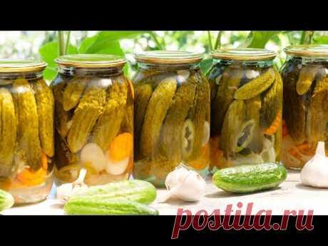 🥒ЛУЧШИЕ маринованные огурцы на зиму! Очень вкусные и хрустящие! Самый простой рецепт огурцов!
