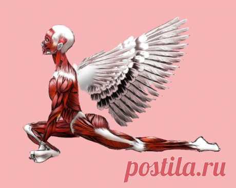 Вибрационные упражнения: тренируем мышцы и очищаем сосуды