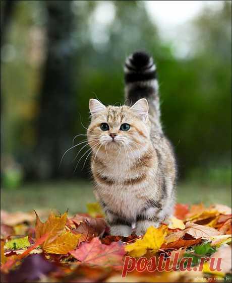 So adorable..