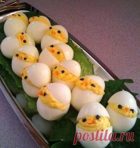 Цыплята в яйце