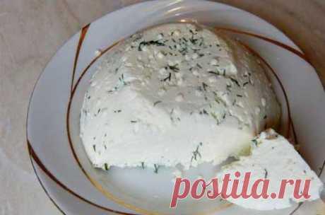Домашний сыр с зеленью в мультиварке - Рецепты для мультиварки Нет ничего вкуснее приготовленного домашнего сыра с добавлением зелени в мультиварке.