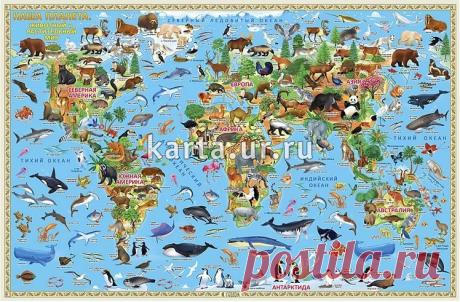 Карта Наша планета. Животный и растительный мир