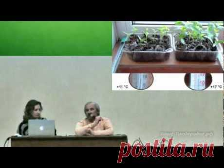 Рассада — залог большого урожая - YouTube