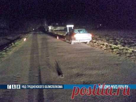 В Вороновском районе Audi переехала пьяного мужчину, который лежал на дороге - grodno24.ru