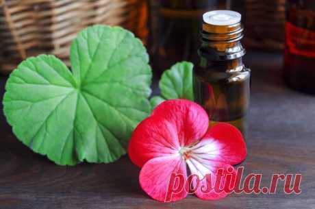 8 лучших натуральных масел, которые помогут победить целлюлит