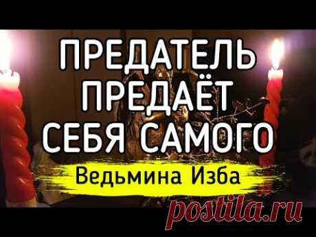 ПРЕДАТЕЛЬ ПРЕДАЁТ СЕБЯ САМОГО / Ведьмина Изба