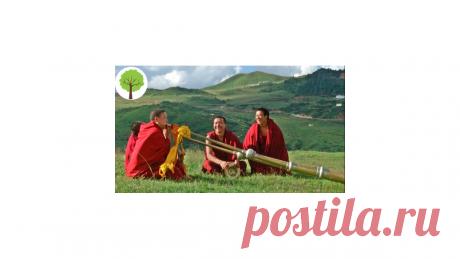 Соседка поделилась со мной интересным методом , который использовали для здоровья монахи Тибета.   Здоровье и Долголетие   Яндекс Дзен