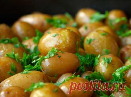 Как получить все полезные вещества из картофеля: 6 простых хитростей — Полезные советы