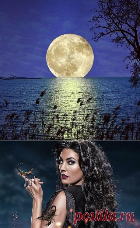 Луна в Скорпионе   Практическая Астрология   Яндекс Дзен