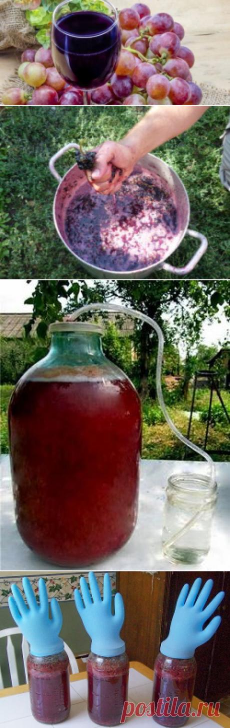 Вино из винограда в домашних условиях: простой рецепт приготовления горячительного напитка