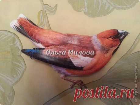 Птичьи секреты. Часть 1.   Страна Мастеров