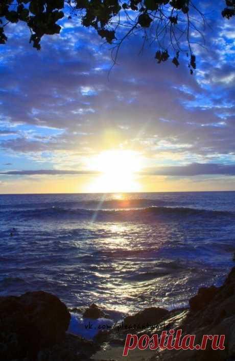 Я мечтаю о доме у моря, Чтобы в нем коротать свои дни, И лишь только я окна открою, Он наполнится шумом волны.  Любоваться чтоб нежным рассветом, Умиляясь бордовой заре, Отражение видя планеты В серебристой блестящей воде.  Чтоб крикливые чайки галдели, Важно споря о птичьих делах, И от  яростных волн цепенела, Повидавшая виды скала.  А еще улыбаться дельфинам, Помахав им с крылечка рукой. Они словно морские дофины, Украшают владенья собой.  По ракушкам беспечно ступая, Сл...