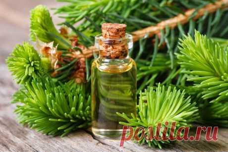 Какие ароматы привлекут в дом достаток и изобилие