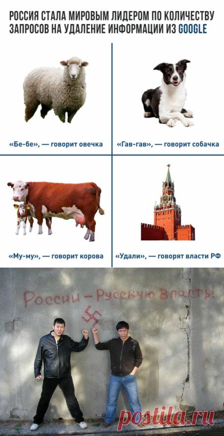 Роисся вперде-10