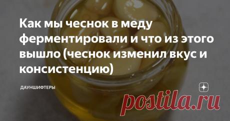 Как мы чеснок в меду ферментировали и что из этого вышло (чеснок изменил вкус и консистенцию) Мы как любители кулинарных экспериментов и всяческих рецептов длительного хранения просто не могли пройти мимо. Ферментировали овощ двумя разными способами.  Зачем ферментировать чеснок?