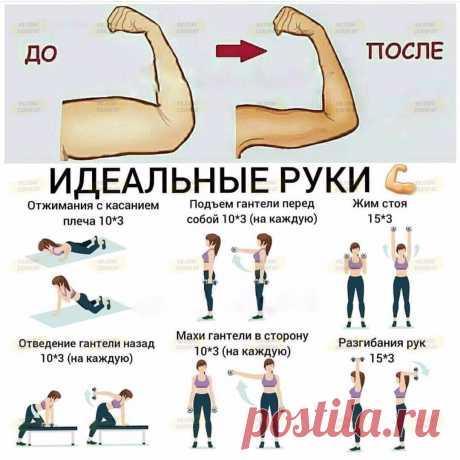 Упражнения для проработки мышц рук. Попробуйте и через месяц увидите результат.