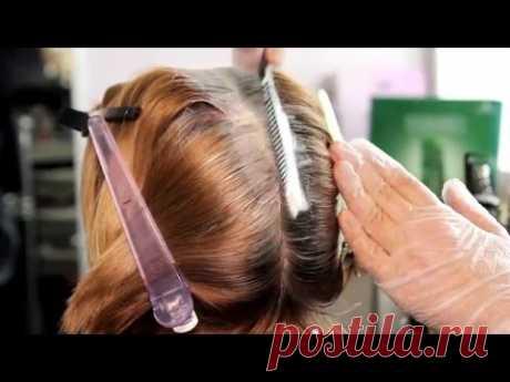 Koloristika. La coloración de los cabellos canos bezammiachnoy por el tinte