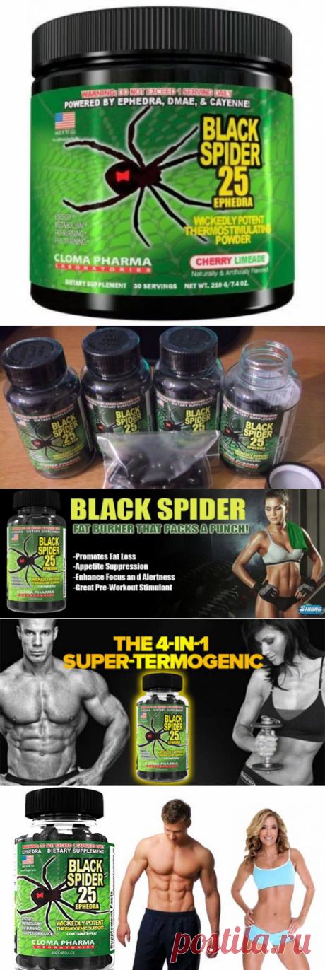 Жиросжигатель BLACK SPIDER: инструкция по применению таблеток