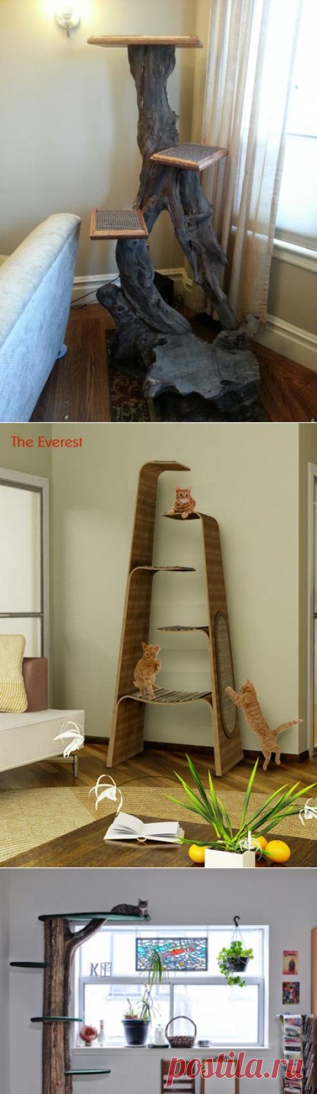 Интерьеры для котолюбов — Мой дом