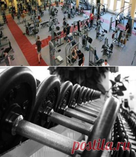 как выбрать тренажерный зал | Sport - My Way