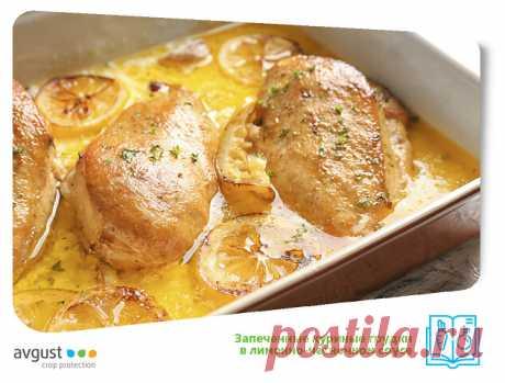 Мы нашли способ сделать куриные грудки сочными и ароматными. Вы просто обязаны попробовать приготовить их таким образом! Кстати, для рецепта можно использовать не только грудки, но и другие части курицы     Ингредиенты: • Куриные грудки – 900 г.  • Лимон – 1 крупный или 2 средних. • Чеснок – 6 зубчиков. • Оливковое масло – 1/3 стакана. • Соль, черный молотый перец – по вкусу.  1. Разогреваем духовку до минимально возможной температуры. Обычно это 150 °C. Соединяем в миске ...