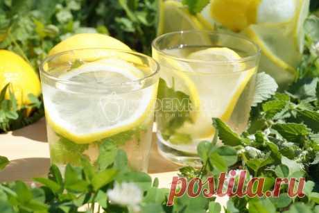 Домашний лимонад с лимоном и мятой Натуральный домашний лимонад с лимоном и мятой, вкусный и освежающий, приготовить очень легко.