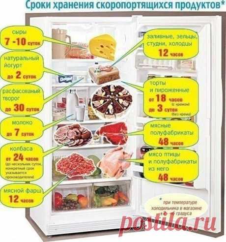 Хранение скоропортящихся продуктов в холодильнике - полезные советы