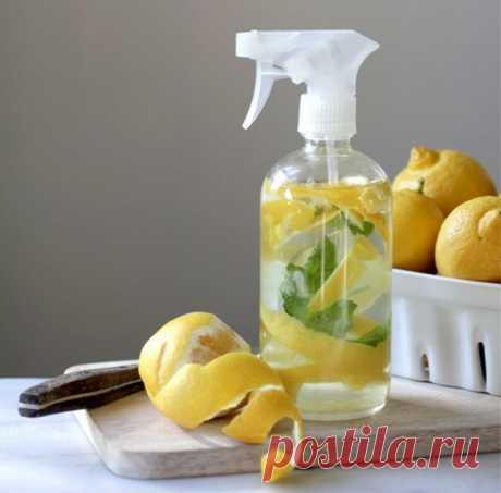 ¡La fruta más útil en la casa!!!