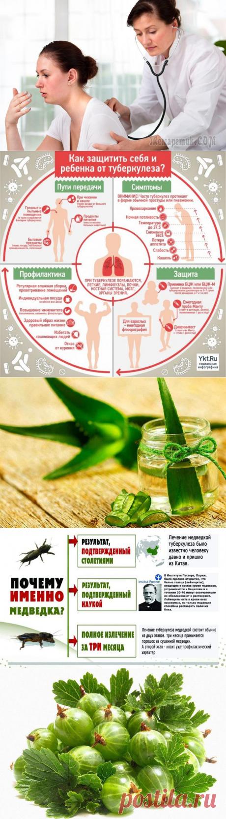 8 способов лечения туберкулеза народными средствами