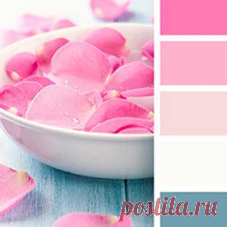 Идеальные сочетания розового цвета - палитры, фотографии интерьеров и советы дизайнеров. Все это на сайте Стоун Флор Новосибирск