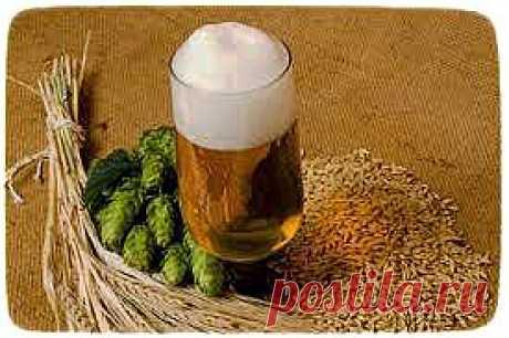 Готовим пиво сами