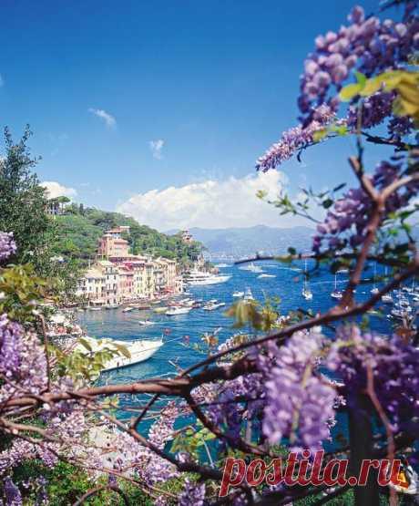 Cruise yachts at beautiful coast of Laguria. Genoa, Italy